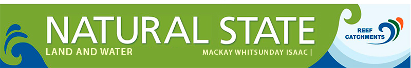 Natural State Land and Water newsletter banner.