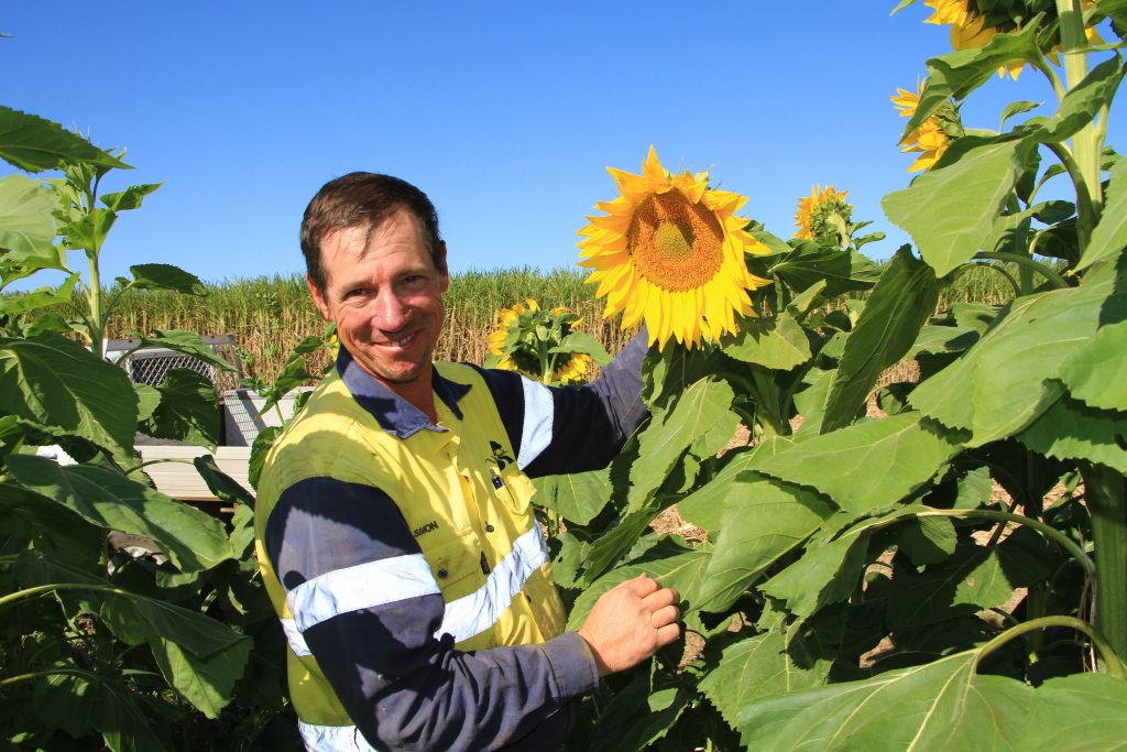 Simon Mattsson's trial includes the intercropping of more than 8 varieties of plants to address and improve soil condition.