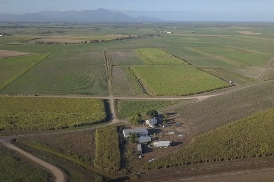 Aerial view of farm and paddocks.